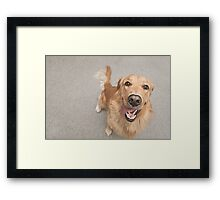Happiest dog on earth Framed Print