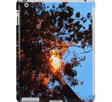 Autumn Glow iPad Case/Skin