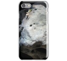 West Kennet Long Barrow, Wiltshire iPhone Case/Skin