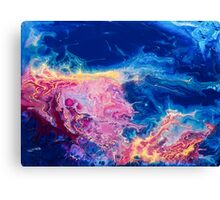 Fluid Abstract Painting II Canvas Print