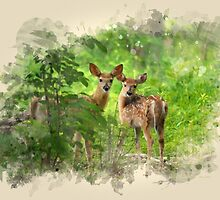 Deer Fawns Watercolor Art by Christina Rollo