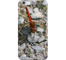 Common Skimmer iPhone Case/Skin