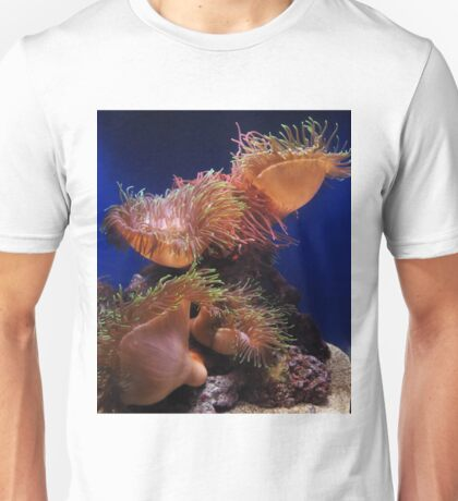 Clownfish hiding in a sea anemone Unisex T-Shirt