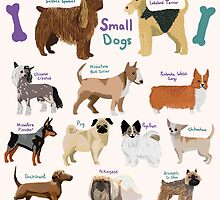 12 Different Small Dogs  by amysheneman