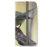 blackpoll warbler iPhone Wallet/Case/Skin