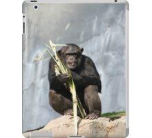 Chimp iPad Case/Skin