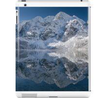 Mirror iPad Case/Skin