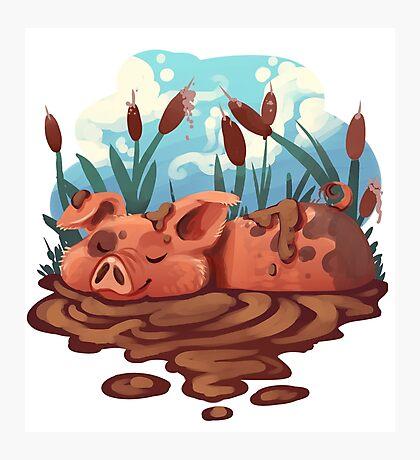 Pig Photographic Print
