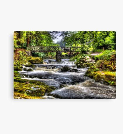 Tollymore Forest Park 2 Canvas Print