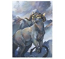 tauntaun - monarch of hoth Photographic Print