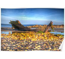 Ship Wreck On A Beach Poster