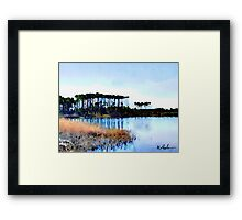 Tall Stand of Trees on Grayton Beach 30a Framed Print