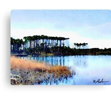 Tall Stand of Trees on Grayton Beach 30a Canvas Print