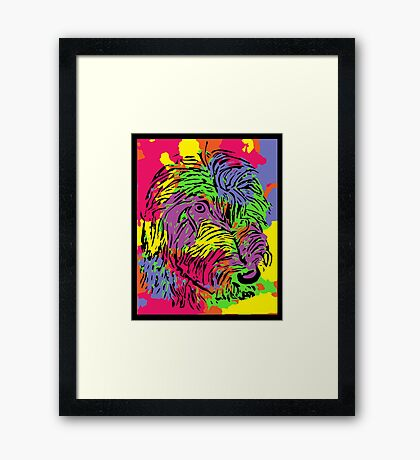 Multicoloured scruffy dog Framed Print