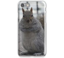 New yorker squirrel iPhone Case/Skin