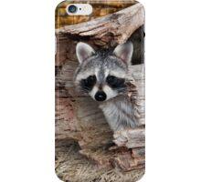 Halloween Raccoon iPhone Case/Skin