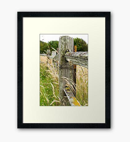 Gracefully Rustic Framed Print