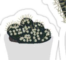 three lil cacti Sticker