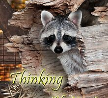 Thinking of You Raccoon by Wild For Ever