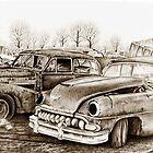 Junk Yard by Margaret Harris