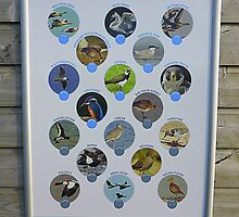 The Birds Of Inch Island by Fara