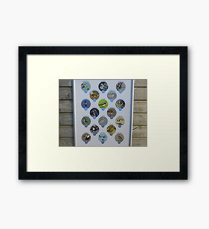 The Birds Of Inch Island Framed Print