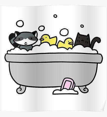 Raccoon and Black Cat Bath Poster