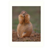 Prairie Dog with Funny Expression Art Print