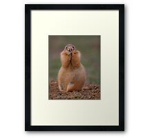 Prairie Dog with Funny Expression Framed Print