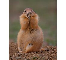 Prairie Dog with Funny Expression Photographic Print