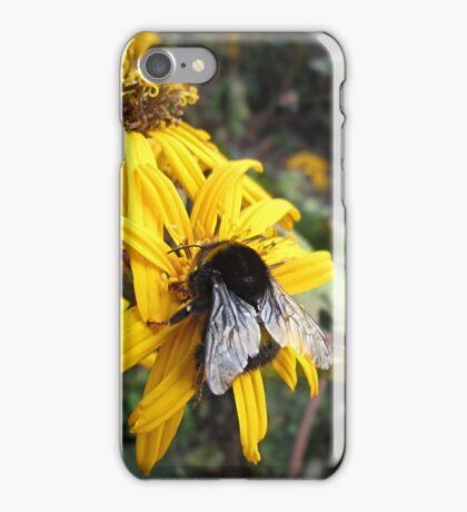 Beautiful Bumble Bee iPhone Case/Skin