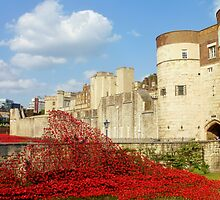 Wave of Blood-Tower of London by InterestingImag