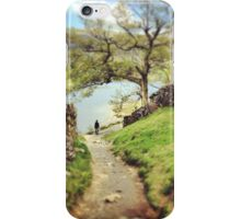 A stroll through the woods iPhone Case/Skin