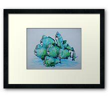 Bump Headed Parrot Fish School Study Framed Print