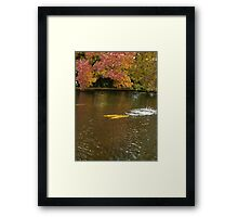 Rainbow Trout Autumn the Salmon Ponds, Tasmania Framed Print