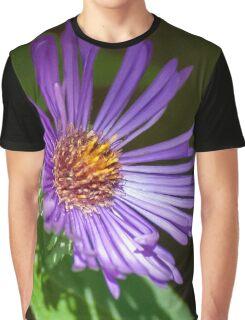 Dark Purple New England Aster Graphic T-Shirt