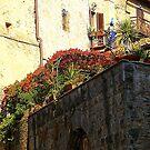 A Roof Garden In San Gimignago by Fara