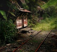 The Old Bush Hut at the End of the Railway Line by Peter Kurdulija