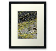 Yellow Life Framed Print