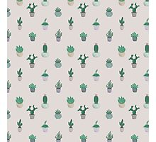 Prickly Pattern Photographic Print