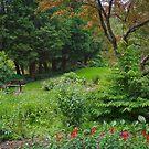 Secret Garden by Jessica Dzupina