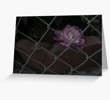 Fence & Flower Greeting Card