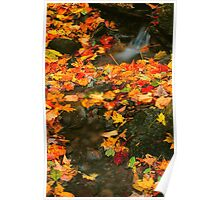 AUTUMN LEAVES. Poster
