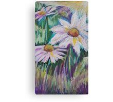 Oil Daisies Canvas Print