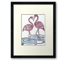 pair of flamingos Framed Print