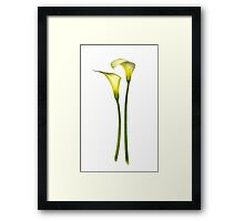 On the Straight and Narrow Framed Print