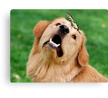 Dog and Butterfly Canvas Print