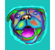 acrylic happy pit bull Photographic Print