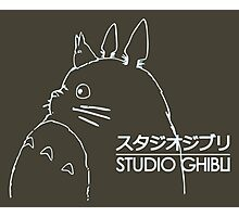 Studio Ghibli Photographic Print