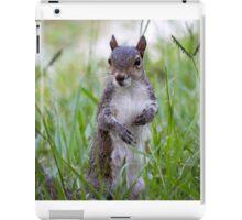 Encounter with a Squirrel iPad Case/Skin